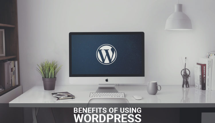 The Benefits of Using WordPress